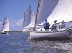 catboat races on Barnegat Bay
